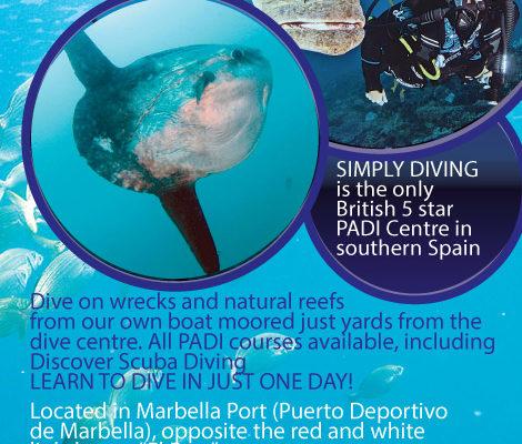 simply-diving